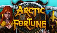 игровой устройство Arctic Fortune