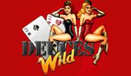 Игровые автоматы Deuces Wild (Vulkan casino)