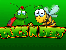bugs and bees