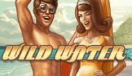 Игровые автоматы онлайн Дикая Вода