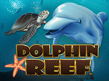 Риф Дельфина онлайн во казино Вулкан